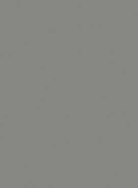 Korpus Basic Staubgrau